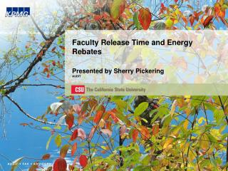 Faculty Release Time and Energy Rebates  Presented by Sherry Pickering AUDIT