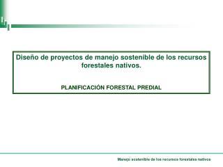 Diseño de proyectos de manejo sostenible de los recursos forestales nativos.
