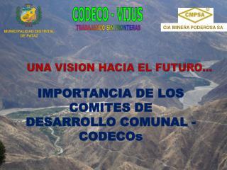 UNA VISION HACIA EL FUTURO…