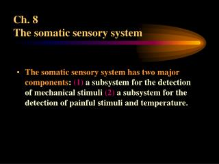 Ch. 8  The somatic sensory system