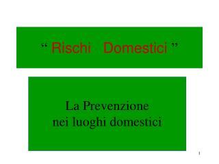 """""""  Rischi   Domestici  """""""