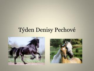 Týden Denisy Pechové