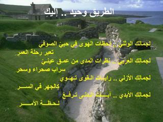 الطريق وحيد .. إليكِ لجمالكِ الوثني .. لحظات الهوى في حبيّ الصوفي تعبر رحلة العمرِ  ِ