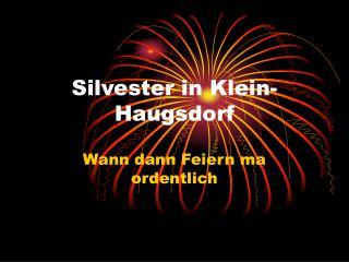 Silvester in Klein-Haugsdorf