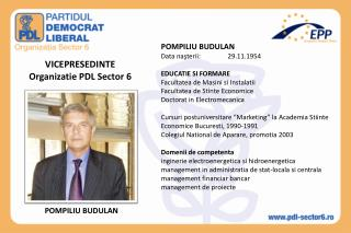 VICEPRESEDINTE Organizatie PDL Sector 6