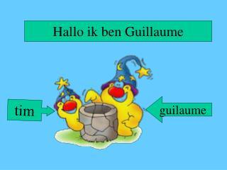 Hallo ik ben Guillaume