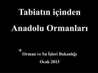 Tabiatın içinden  Anadolu Ormanları Orman ve Su İşleri Bakanlığı Ocak 2013