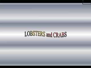 LOBSTERS and CRABS