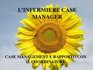 L'INFERMIERE CASE MANAGER