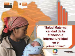 """""""Salud Materna: calidad de la atención e     interculturalidad  en el  primer nivel"""""""