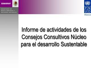 Informe de actividades de los Consejos Consultivos Núcleo para el desarrollo Sustentable