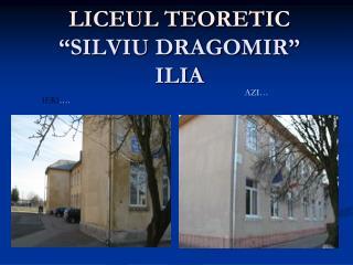 """LICEUL TEORETIC """"SILVIU DRAGOMIR"""" ILIA"""