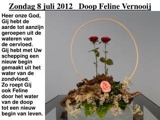 Zondag 8 juli 2012   Doop Feline Vernooij