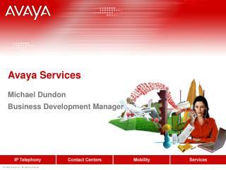 Avaya Services