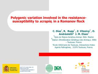 Polygenic variation involved in the resistance-susceptibility to  scrapie , in a Romanov flock