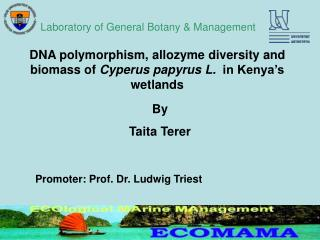 DNA polymorphism, allozyme diversity and biomass of  Cyperus papyrus L.   in Kenya's wetlands