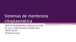 Sistemas de membrana citoplasmática