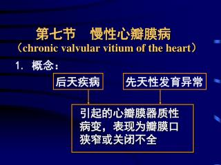 第七节  慢性心瓣膜病 ( chronic valvular vitium of the heart)