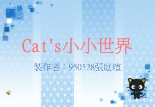 Cat ' s 小小世界