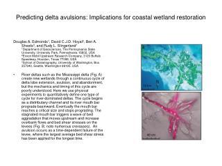 Predicting delta avulsions: Implications for coastal wetland restoration