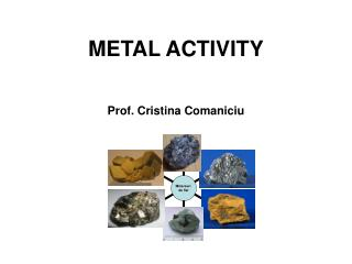 METAL ACTIVITY Prof. Cristina  Comaniciu