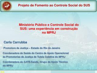 Ministério Público e Controle Social do SUS: uma experiência em construção no MPRJ