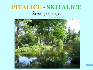 PITALICE  -  SKITALICE Životinjski svijet Prema knjizi Mladena Kušeca