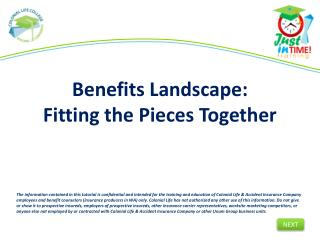 Benefits Landscape: Fitting the Pieces Together