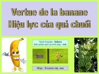 Vertue de la banane Hiệu lực của quả chuối