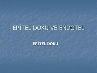 EPİTEL DOKU VE ENDOTEL