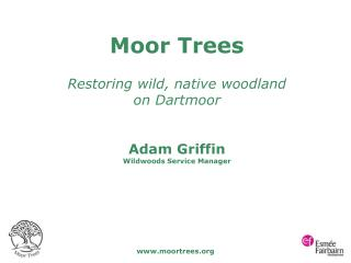Moor Trees Restoring wild, native woodland  on Dartmoor Adam Griffin Wildwoods Service Manager