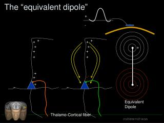 """The """"equivalent dipole"""""""