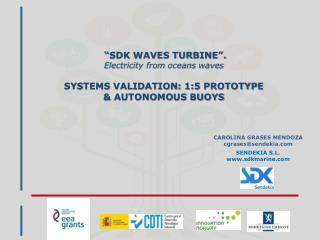 """SDK WAVES TURBINE"".  Electricity from oceans waves SYSTEMS VALIDATION: 1:5 PROTOTYPE"
