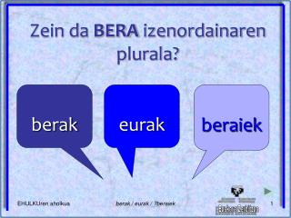 Zein da  BERA  izenordainaren plurala?