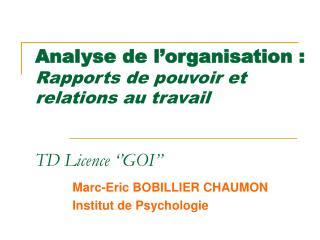 Analyse de l organisation : Rapports de pouvoir et relations au travail    TD Licence   GOI