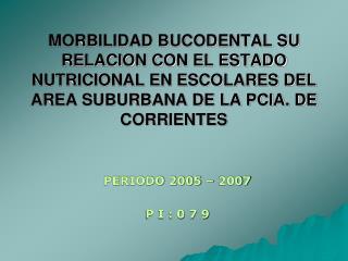 PERIODO 2005 – 2007 P I : 0 7 9