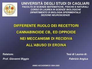 UNIVERSITÀ DEGLI STUDI DI CAGLIARI FACOLTÀ DI SCIENZE MATEMATICHE, FISICHE E NATURALI