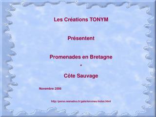 Les Créations TONYM Présentent Promenades en Bretagne * Côte Sauvage Novembre 2006