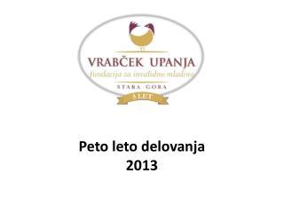 Peto leto delovanja 2013