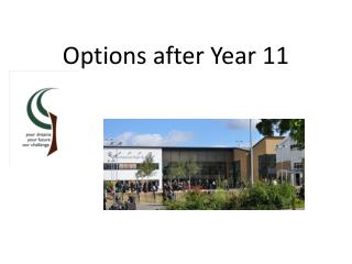 Options after Year 11