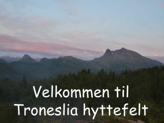 Velkommen til Troneslia hyttefelt