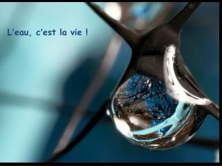L ' eau, c ' est la vie !