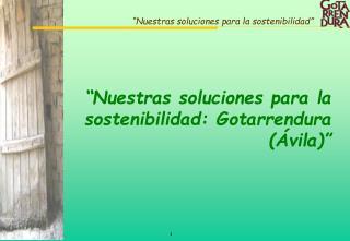 �Nuestras soluciones para la sostenibilidad: Gotarrendura (�vila)�