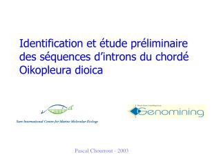 Identification et étude préliminaire des séquences d'introns du chordé Oikopleura dioica