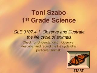 Toni  Szabo 1 st  Grade Science GLE 0107.4.1  Observe and illustrate the life cycle of animals