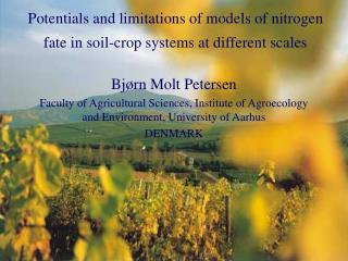 Potentials and limitations of models of nitrogen fate in soil-crop systems at different scales