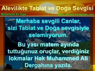 Merhaba sevgili Canlar, sizi Tabiat ve Doğa sevgisiyle selamlıyorum.