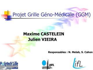 Projet Grille Géno-Médicale (GGM)