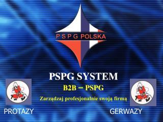 P SPG  SYSTEM