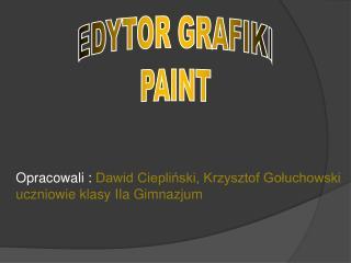 E DYTOR GRAFIKI PAINT
